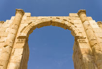 South Gate, Jerash, Jordan by Danita Delimont