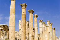 The Cardo, North Colonnaded Street, Jerash, Jordan von Danita Delimont