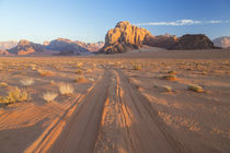 Tracks in the desert, Wadi Rum, Jordan by Danita Delimont