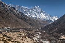 Dingbochhe, Nepal. von Danita Delimont