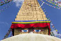 Bodnath Stupa, Kathmandu Valley, Nepal by Danita Delimont