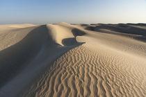 Khaluf desert, Oman. von Danita Delimont