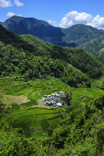 Bangaan in the rice terraces of Banaue, Northern Luzon, Philippines von Danita Delimont