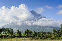 Mount Mayon Volcano, Legazpi, Southern Luzon, Philippines von Danita Delimont