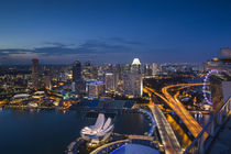 Singapore, elevated city skyline above Marina Reservoir, dusk von Danita Delimont