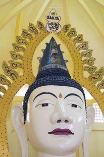 Singapore, Little India, Buddha Gaya Temple, very large Buddha statue by Danita Delimont