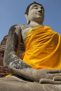 Thailand, Ayutthaya von Danita Delimont