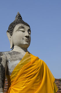 Thailand, Ayutthaya by Danita Delimont