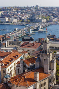 Karakoy, Eminonu and Galata Bridge at the Golden Horn as see... by Danita Delimont