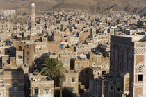 Mosque tower and skyline, San'a, Yemen by Danita Delimont