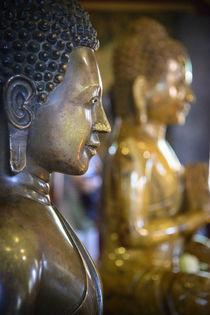 Cambodia, Phnom Penh by Danita Delimont