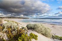 Hanson Bay, Kangaroo Island, Australia by Danita Delimont