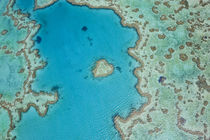 Aerial view of Heart Reef, part of Great Barrier Reef, Queenslan von Danita Delimont
