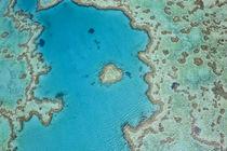 Aerial view of Heart Reef, part of Great Barrier Reef, Queenslan by Danita Delimont
