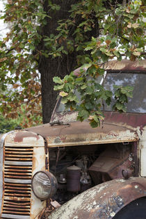 Southwest Australia, Boyup Brook, old truck by Danita Delimont