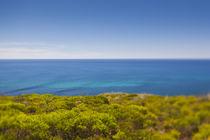 Southwest Australia, Cape Naturaliste, landscape, defocussed by Danita Delimont