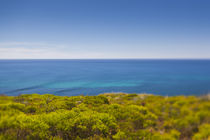 Southwest Australia, Cape Naturaliste, landscape, defocussed von Danita Delimont