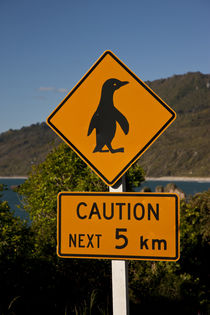 South Pacific, New Zealand, South Island von Danita Delimont