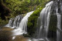 Purakaunui Falls, Catlins, South Otago, South Island, New Zealand by Danita Delimont