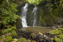 Horseshoe Falls, Matai Falls, Catlins, South Otago, South Is... by Danita Delimont