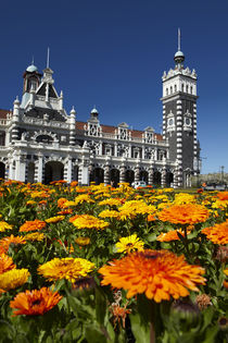 Spring Flowers and Historic Railway Station, Dunedin, South ... by Danita Delimont