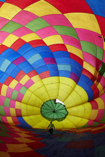 Inside a hot air balloon, Balloons over Waikato Festival, La... by Danita Delimont