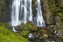 Marokopa Falls, Waitomo District, Waikato, North Island, New Zealand by Danita Delimont