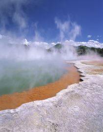 Wai-O-Tapu Thermal Area, steam rising from Champagne Pool, N... von Danita Delimont