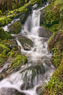 New Zealand, Asia, Glenorchy Small Falls by Danita Delimont