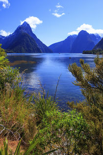 Looking across the waters of Milford Sound towards Mitre Pea... by Danita Delimont