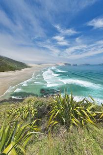 Te Werahi Beach by Danita Delimont