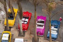 Cuba, Havana by Danita Delimont