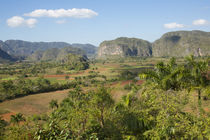 Cuba, Vinales, valley with tobacco farms and karst hills by Danita Delimont