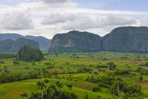 Limestone hill and farming land in Vinales valley, UNESCO Wo... by Danita Delimont