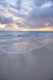Dominican Republic, Punta Cana, Higuey, Bavaro, Bavaro Beach, sunrise by Danita Delimont