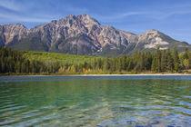 Canada, Alberta, Jasper National Park von Danita Delimont