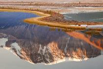 Canada, Alberta, Jasper National Park by Danita Delimont