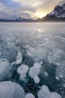 Canada, Alberta, Abraham Lake von Danita Delimont