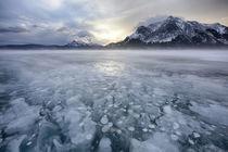 Canada, Alberta, Abraham Lake by Danita Delimont