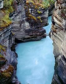 Canada, Alberta, Jasper National Park, Athabasca River has c... von Danita Delimont