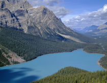 Canada, Alberta, Banff National Park, Turquoise color of Pey... by Danita Delimont