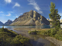 Crowfoot Mountain, Bow Lake, Banff National Park, Alberta by Danita Delimont