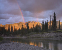 Rainbow over Fairholme Range and Exshaw Creek, Alberta, Canada von Danita Delimont
