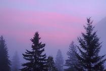 Canada, British Columbia, Mount Robson Provincial Park von Danita Delimont