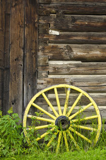 Old wagon wheel in historic old gold town Barkersville, Brit... by Danita Delimont