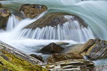 Blanket Creek, Blanket Creek Provincial Park, Sutherland Fal... by Danita Delimont