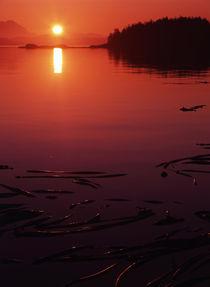 Canada, British Columbia, Vancouver Island, View of beach at sunset von Danita Delimont