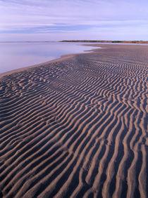 Ripples in the sand, Kouchibouguac National Park, New Brunsw... von Danita Delimont