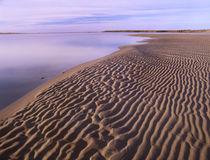 Rippled sand, Kouchibouguac National Park, New Brunswick, Canada von Danita Delimont