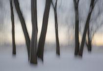 Canada, Ottawa, Ottawa River by Danita Delimont